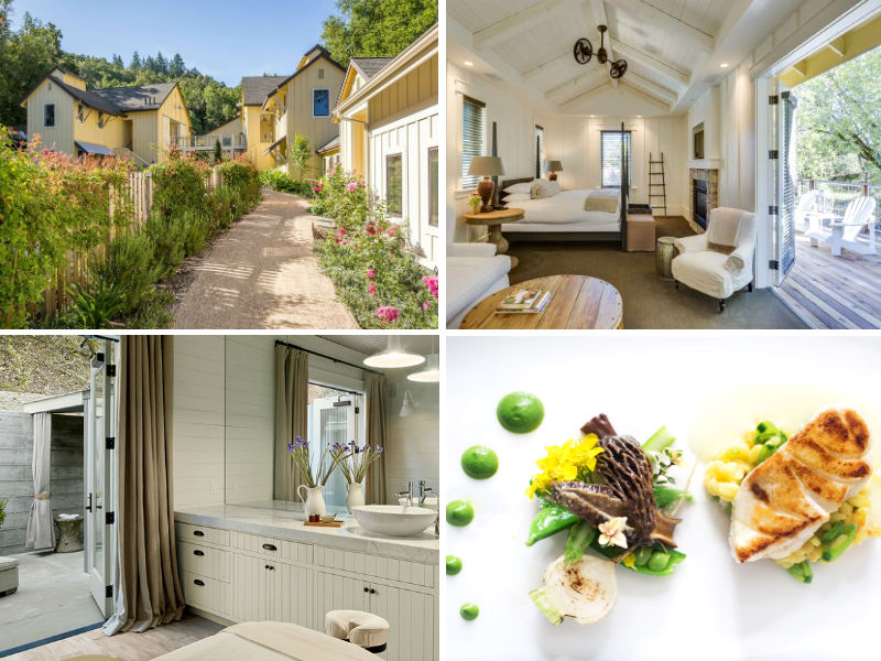 Amista Vineyards and Farmhouse Inn Partners in Wine Country Living