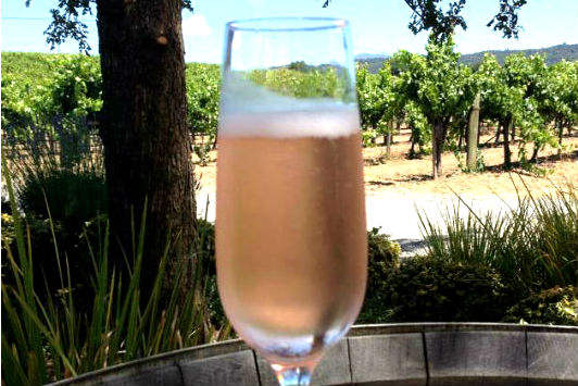 Amista Vineyards Sparkling Grenache